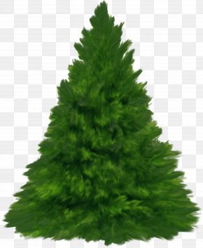Fir Tree - New Year Tree Christmas Day Yandex Russia PNG