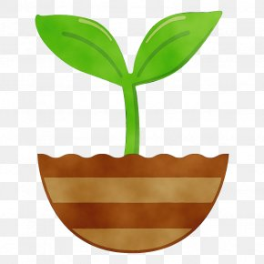 Plant Stem Logo - Leaf Green Plant Flowerpot Tree PNG