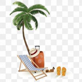Beach Element Vector - Tropical Islands Resort Beach Seaside Resort Illustration PNG