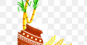 Greeting Elements - Thai Pongal Makar Sankranti Greeting & Note Cards Wish PNG