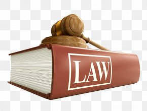 United States - United States Lawyer Law Firm Criminal Law PNG