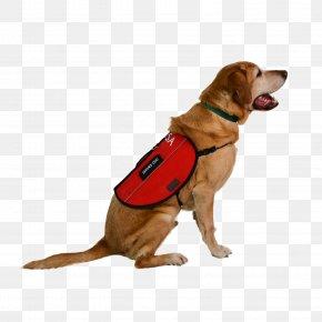 Police Dog - Service Dog Dog Harness Leash Emotional Support Animal PNG