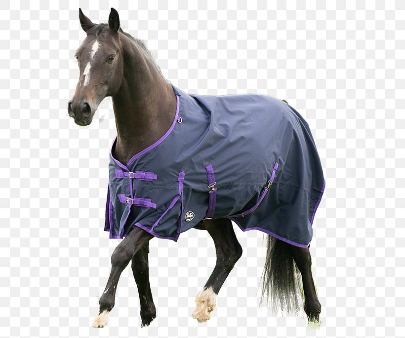 Gallop Horse Blanket Carpet Equestrian