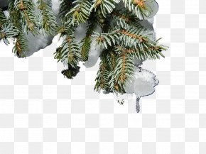 Hanging Christmas Tree Snow - Snow Christmas Tree Christmas Tree PNG