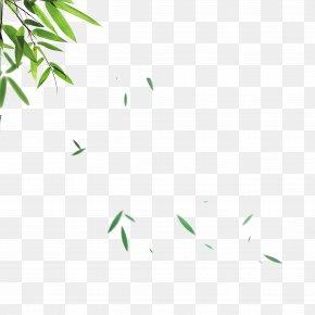 Green Bamboo Leaves Falling Material - Bamboo Leaf Skin PNG
