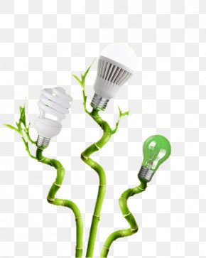 Light Bulb With Bamboo Material - Incandescent Light Bulb Lamp Electric Light PNG