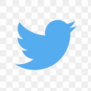 Social Media - Social Media Logo Business Marketing PNG