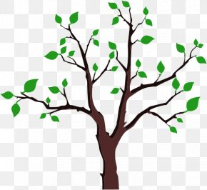 Foliage Cliparts - Paper Bumper Sticker Tree Decal PNG