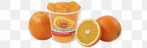 Mandarin Orange - Orange Juice Fruit Cup Orange Drink Vegetarian Cuisine PNG