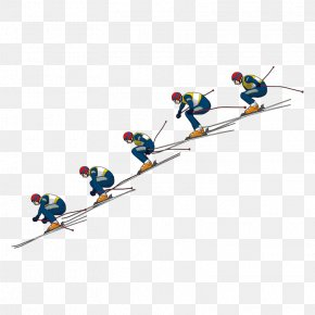 Skiing - Slalom Skiing Sled Winter Sport Snow PNG