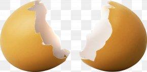 Broken Egg Shell - Egg Wallpaper PNG