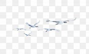 Crane - White Angle Pattern PNG
