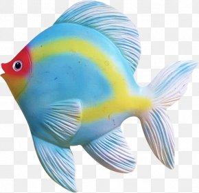 Fish - Tropical Fish Coral Reef Fish Clip Art PNG