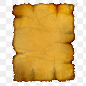 Yellow Burned Paper Edge - Paper Yellow Scroll Book PNG