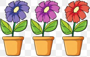 Flower - Floral Design Flower Illustration Vector Graphics Royalty-free PNG