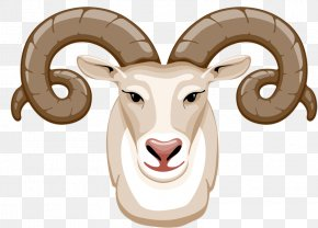 Corner Goat - Goat Sheep Christmas Clip Art PNG