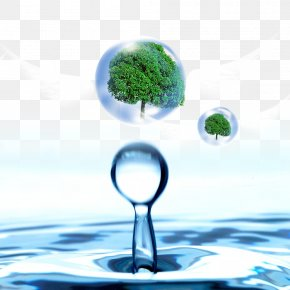 Water Droplets In The Tree - Water Drop Banner PNG
