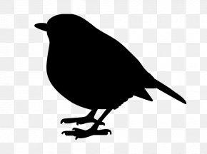 Bird - Bird Common Raven Art Image Silhouette PNG