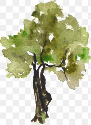 Hand-painted Watercolor Trees - Tree Watercolor Painting Clip Art PNG
