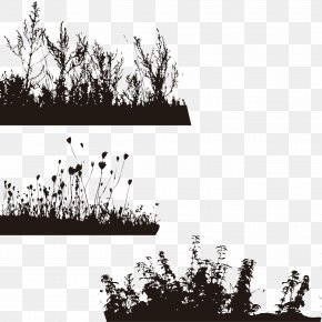 Silhouette Grass - Silhouette Tree Wallpaper PNG
