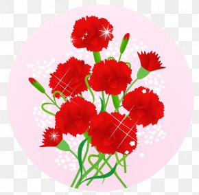 Mother's Day - Carnation Mother's Day Cut Flowers 舞妓の茶本舗 PNG