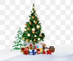 Christmas Tree - Christmas Tree Paper Christmas Gift PNG