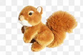 Squirrel Plush - Stuffed Toy Doll Squirrel Plush PNG