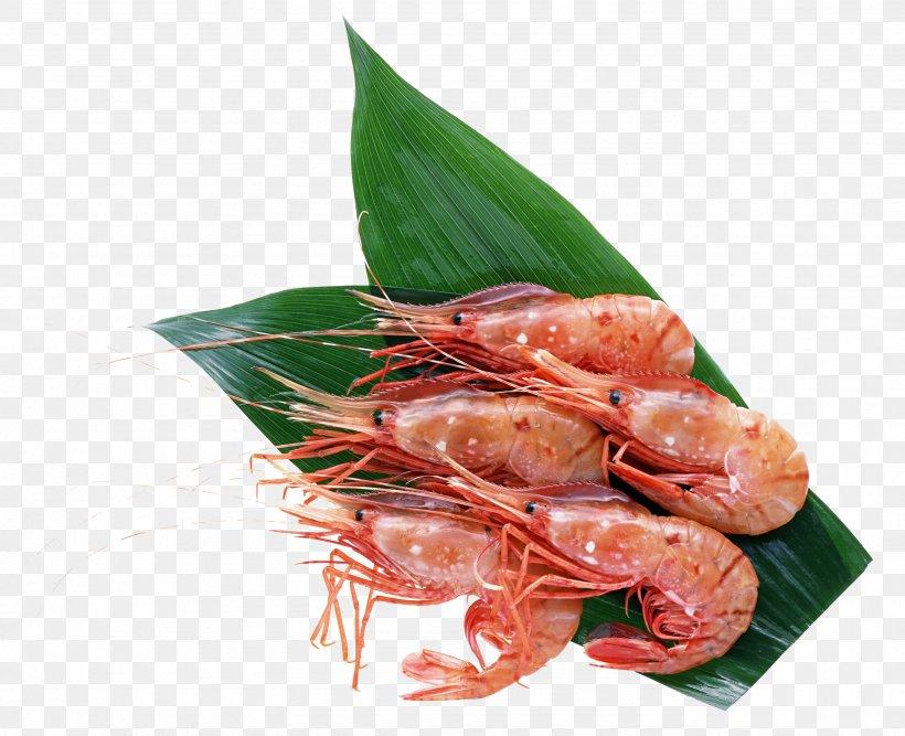 Hokkaido Sushi Seafood Crab Sashimi, PNG, 2571x2094px, Hokkaido, Animal Source Foods, Botan Shrimp, Caridean Shrimp, Crab Download Free