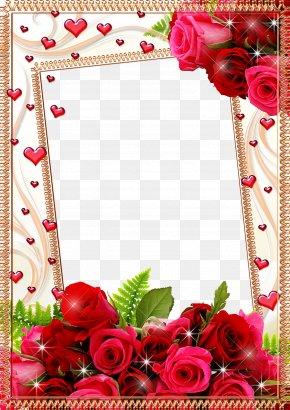 Mood Frame Pictures - Picture Frame Flower Rose PNG