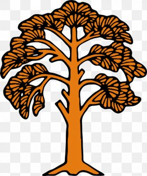 Image Of A Tree - Tree Clip Art PNG
