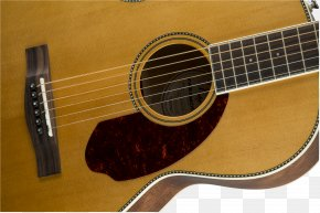 Acoustic Guitar - Steel-string Acoustic Guitar Musical Instruments Acoustic-electric Guitar PNG