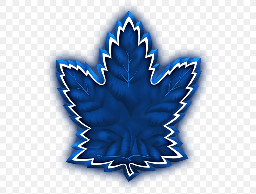 201718 Toronto Maple Leafs Season National Hockey League