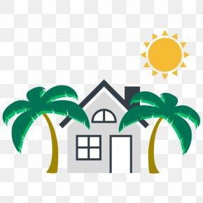 Plant Palm Tree - Palm Tree Leaf PNG
