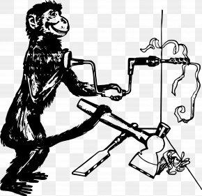 Carpenter Tools - Tool Monkey Primate Clip Art PNG