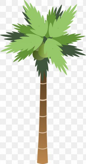 Palm Tree - Tree Arecaceae Clip Art PNG