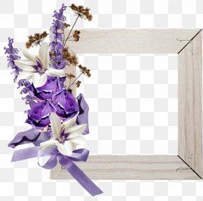 Flower - Floral Design Lavender Flower Clip Art PNG