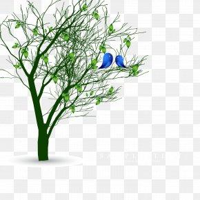 Vector Spring Tree - Bird Euclidean Vector Spring Tree PNG