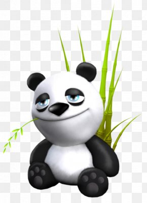 Animation - Giant Panda Desktop Wallpaper 3D Computer Graphics Animation PNG