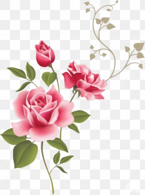 Rose - Wall Decal Rose Flower Gift Clip Art PNG