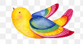 Birds - Earth Saint Pauls United Methodist Church Family Child Evangelical Environmentalism PNG