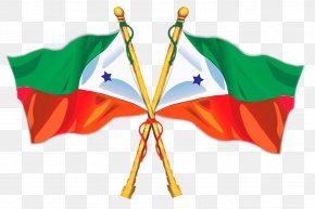 Flag India - Muthupet Popular Front Of India Social Democratic Party Of India Flag PNG