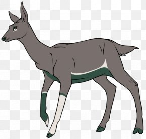 Goat - Antelope Goat Reindeer Elk PNG
