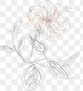 Watercolor Rose Rose Vector - Line Floral Design Flower Euclidean Vector PNG