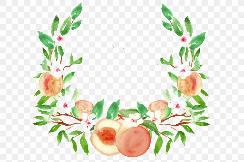 Peach Watercolor Painting Drawing Fruit Clip Art, PNG, 1599x1066px, Peach, Branch, Color, Creative Market, Drawing Download Free
