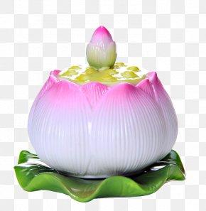 Lotus Cup - Cup Download PNG