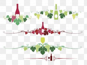 Hand Painted Patterns Of Grape Vines - Wine Common Grape Vine PNG