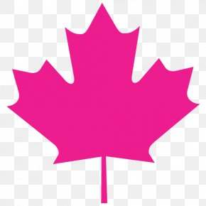 Canada - Flag Of Canada Maple Leaf National Flag Stock Photography PNG