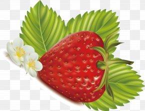 Strawberry Decorative Vector Pattern - Strawberry Frutti Di Bosco Euclidean Vector Food PNG