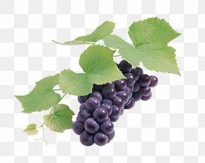 Black Grapes - Grape Seed Extract Wine Grapefruit PNG
