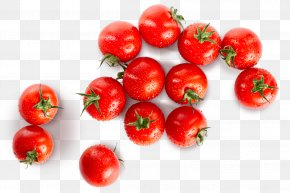 Cherry Tomato - Cherry Tomato Italian Cuisine Food Vegetable PNG